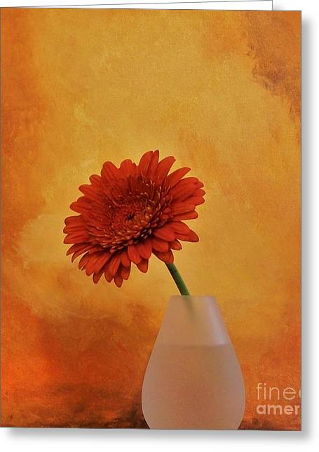 Floral Photos Mixed Media Greeting Cards - Gerber Girl Greeting Card by Marsha Heiken