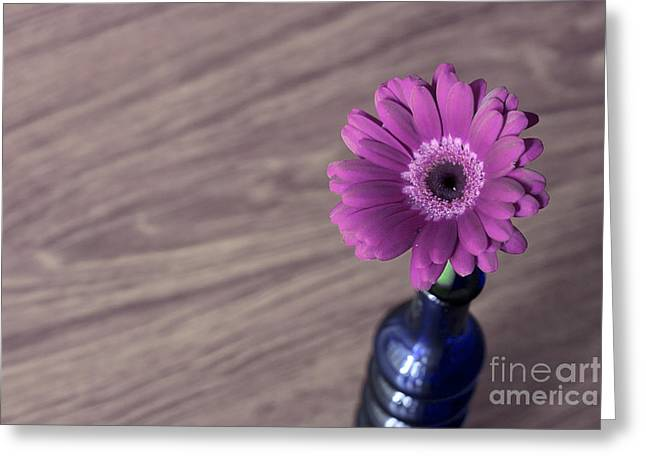 Couple Pyrography Greeting Cards - Gerbera into blue Vase Greeting Card by Soultana Koleska