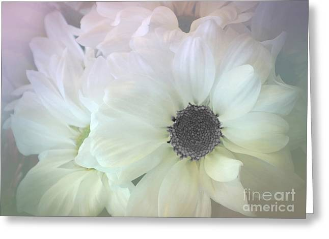 Subtle Colors Greeting Cards - Gerbera Softness       Greeting Card by Kaye Menner