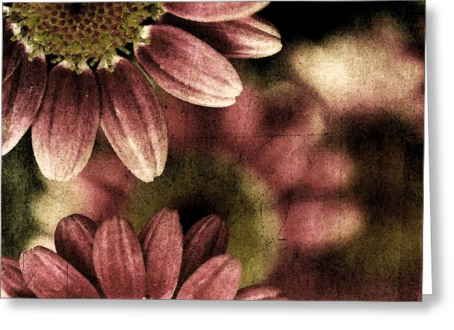 Gerberas Greeting Card by Bonnie Bruno
