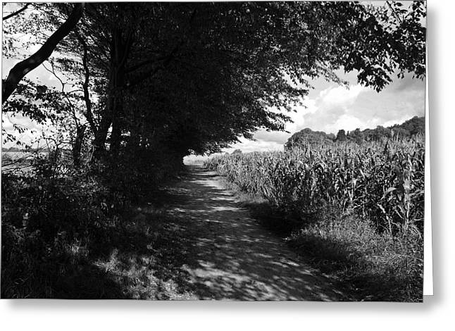 Deutschland Greeting Cards - German Path Black and White Greeting Card by Edward Myers
