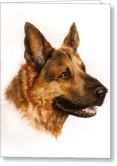 Guard Dog Pastels Greeting Cards - German Sheppard Greeting Card by Patricia Ivy