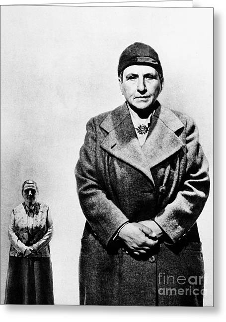 Recently Sold -  - Stein Greeting Cards - Gertrude Stein (1874-1946) Greeting Card by Granger