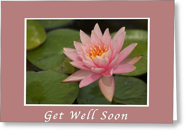 Pink Lotus Greeting Cards - Get Well Pink Lotus Greeting Card by Michael Peychich