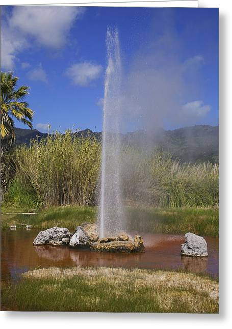 Geothermal Greeting Cards - Geyser Napa Valley Greeting Card by Garry Gay
