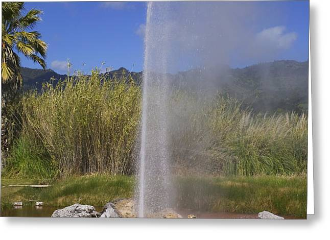 Geyser Napa Valley Greeting Card by Garry Gay