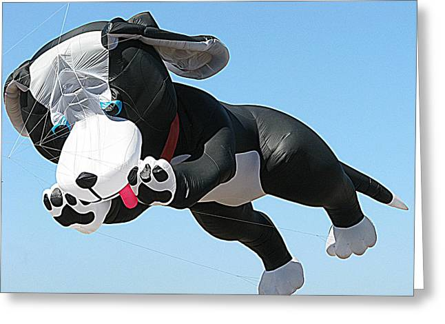 Sam Sheats Greeting Cards - Giant Black and White Dog Kite 2 Greeting Card by Samuel Sheats