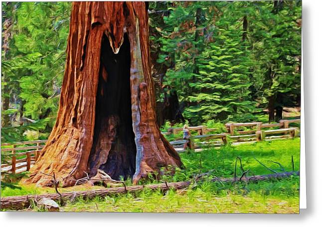 Sequoia National Park Greeting Cards - Giant Sequoia Greeting Card by Heidi Smith