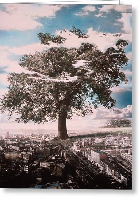 City Buildings Greeting Cards - Giant Tree in City Greeting Card by Hag