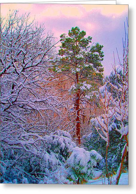 Visionary Artist Greeting Cards - Gila Wilderness Winter Greeting Card by George  Page
