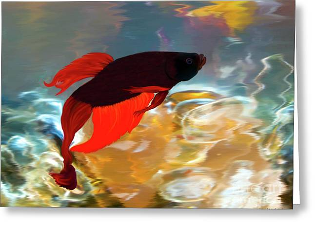 Betta Greeting Cards - Gilberts Red Beta Greeting Card by Patricia Griffin Brett
