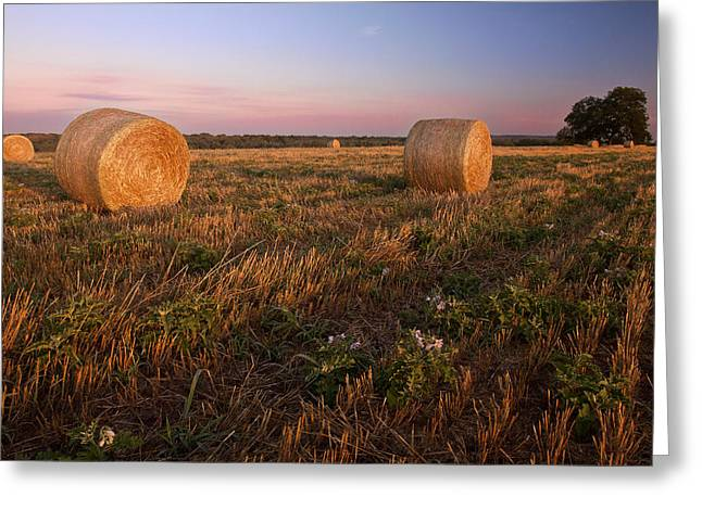 The Hills Greeting Cards - Gillespie County Sunrise 2 Greeting Card by Paul Huchton