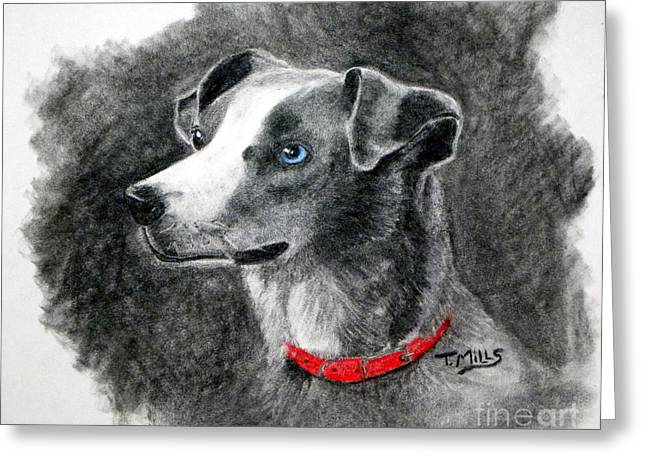 Mills Pastels Greeting Cards - Ginger in Charcoal Greeting Card by Terri Mills