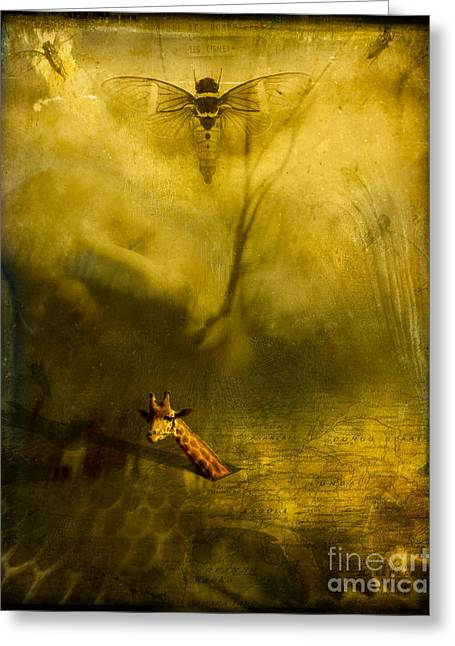 Cigal Greeting Cards - Giraffe and the heart of darkness Greeting Card by Paul Grand
