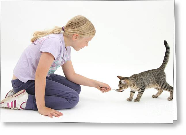 Girl Feeding Kitten From A Spoon Greeting Card by Mark Taylor