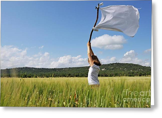 Azur Greeting Cards - Girl holding high a white flag in wheat field Greeting Card by Sami Sarkis