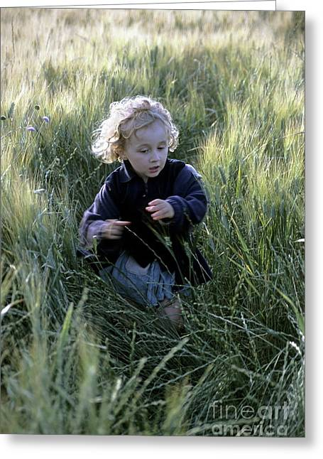Recently Sold -  - Close Focus Nature Scene Greeting Cards - Girl running in wheat field Greeting Card by Sami Sarkis