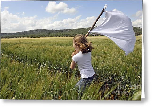 Children Only Greeting Cards - Girl with a white flag in wheat field Greeting Card by Sami Sarkis