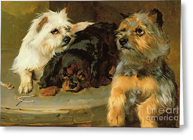 Wishes Paintings Greeting Cards - Give a Poor Dog a Bone Greeting Card by George Wiliam Horlor