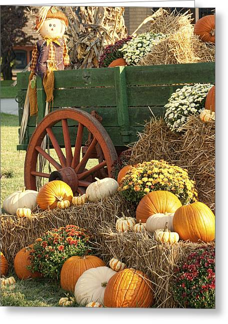 Harvestime Greeting Cards - Give Thanks for the Earths Bounty Greeting Card by Kathy Clark