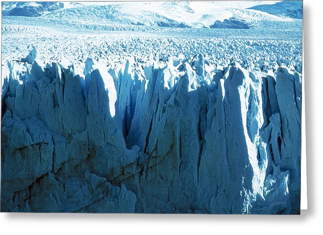 Bergy-bit Greeting Cards - Glacial Ice Cliff Greeting Card by Cristina Pedrazzini