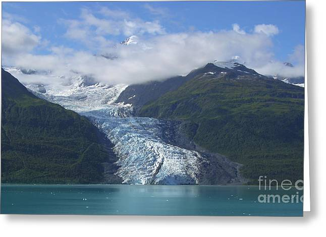 Glacier Bay Greeting Cards - Glacier Bay Afternoon Greeting Card by Sandra Bronstein