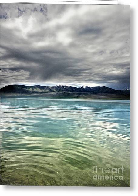Gregory Dyer Greeting Cards - Glacier National Park - Lake McDonald Greeting Card by Gregory Dyer