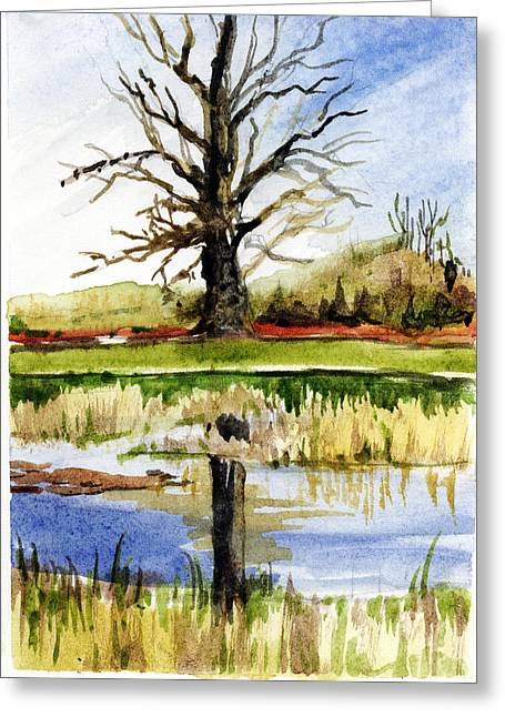 Oak Creek Drawings Greeting Cards - Glacier Ridge Dublin Ohio Greeting Card by Mindy Newman