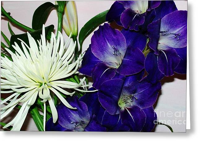 Purple Gladiolas Greeting Cards - Gladiola and Spider Mum Greeting Card by Marsha Heiken
