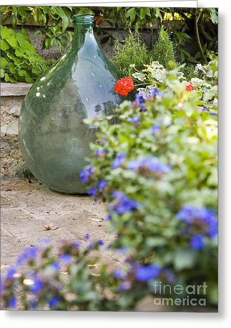 Glass Bottle Greeting Cards - Glass Bottle in Garden Greeting Card by Andersen Ross