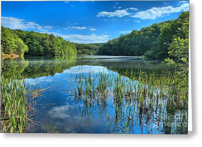 Reflection In Water Greeting Cards - Glassy Waters Greeting Card by Adam Jewell