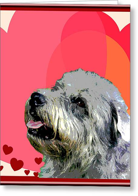 Glen Of Imaal Terrier Greeting Card by One Rude Dawg Orcutt