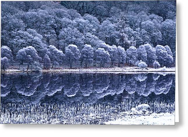 Trees Reflecting In Water Greeting Cards - Glendalough National Park, County Greeting Card by Richard Cummins