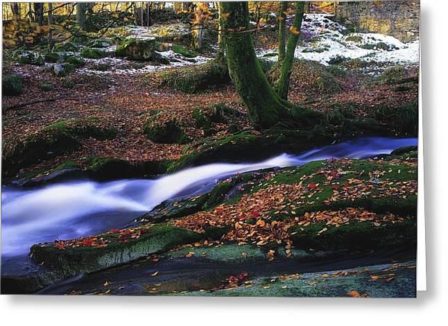 Snowy Brook Greeting Cards - Glenmacnass Waterfall, Co Wicklow Greeting Card by The Irish Image Collection