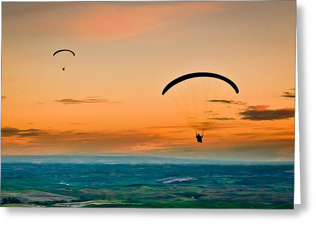 Parasail Greeting Cards - Gliders Greeting Card by Niels Nielsen