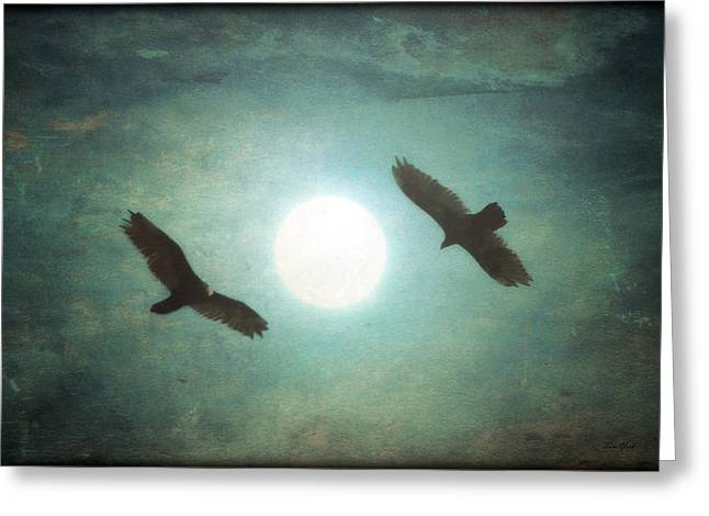 Bird Framed Prints Greeting Cards - Gliding Greeting Card by Tom York Images