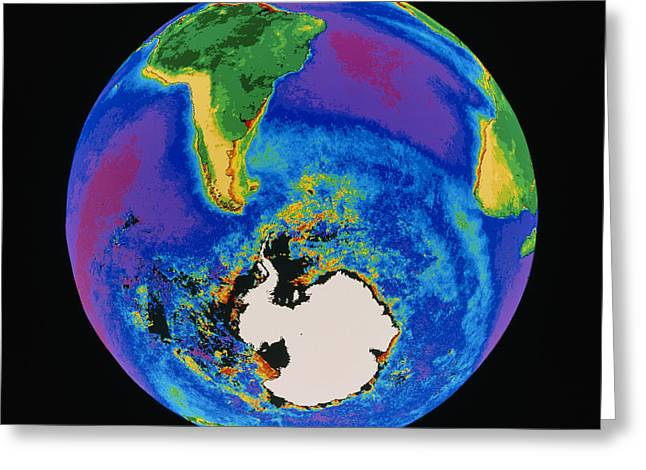 Global Biosphere, Southern Hemisphere, From Space Greeting Card by Gene Feldman, Nasa Gsfc