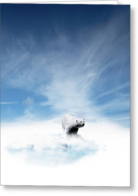 Ursus Maritimus Greeting Cards - Global Warming In The Arctic Greeting Card by Victor Habbick Visions