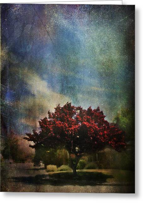 Red Leaves Digital Greeting Cards - Glory Greeting Card by Laurie Search