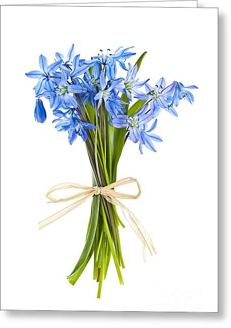 Twine Greeting Cards - Blue wildflower bouquet Greeting Card by Elena Elisseeva