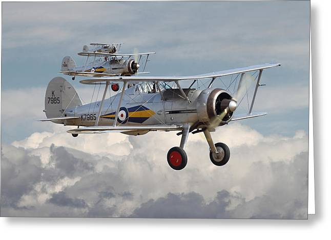 Gladiator Greeting Cards - Gloster Gladiator Greeting Card by Pat Speirs