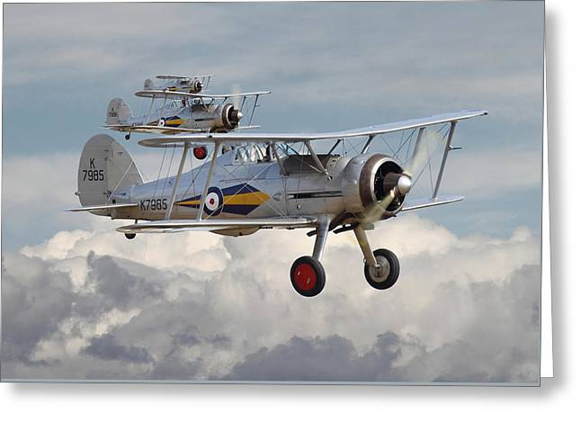 Gladiators Greeting Cards - Gloster Gladiator Greeting Card by Pat Speirs