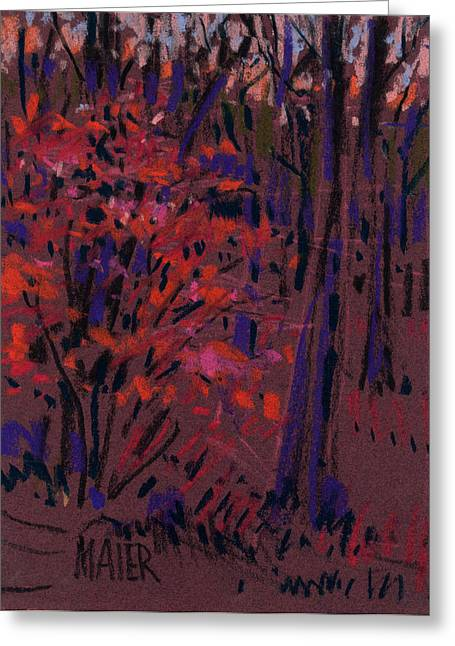 Lighting Greeting Cards - Glow at Dusk Greeting Card by Donald Maier
