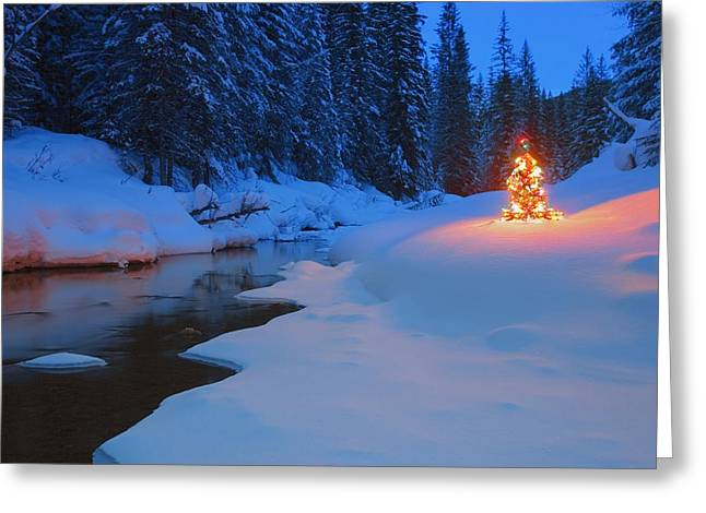 Snow-covered Landscape Photographs Greeting Cards - Glowing Christmas Tree By Mountain Greeting Card by Carson Ganci
