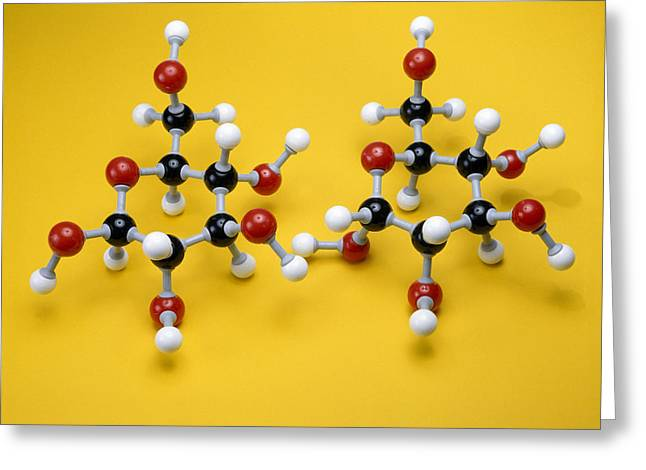 Glucose Greeting Cards - Glucose Isomer Models Greeting Card by Andrew Lambert Photography