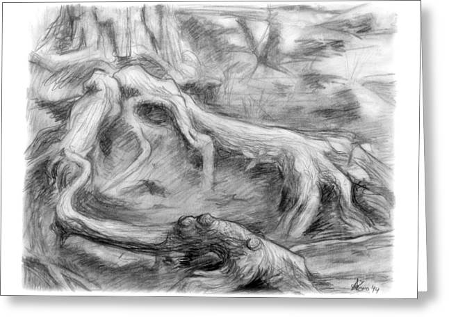 Organic Drawings Greeting Cards - Gnarled Greeting Card by Adam Long