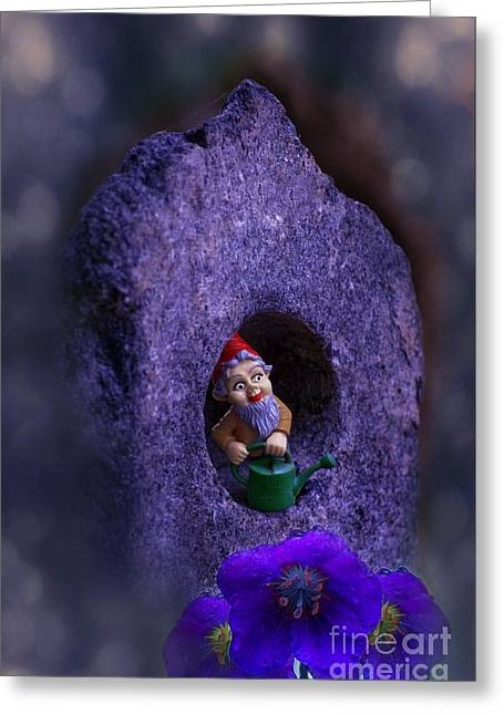 Gnomes Greeting Cards - Gnomes Work Is Never Done Greeting Card by The Stone Age