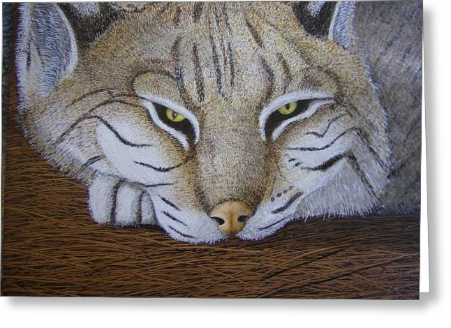 Bobcats Paintings Greeting Cards - Go Away Greeting Card by Rick Sirmons