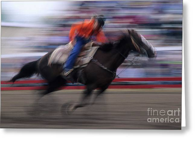 Wild Racers Greeting Cards - Rodeo Go For Broke Greeting Card by Bob Christopher