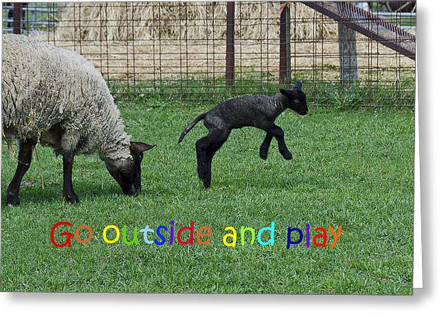 Barn Yard Greeting Cards - Go outside and play Rainbow Greeting Card by LeeAnn McLaneGoetz McLaneGoetzStudioLLCcom
